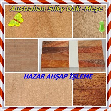 Australıan-Sılky-Oak-Meşe