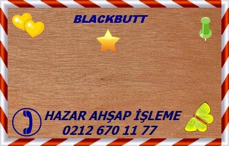 Blackbutt-Eng.-Dışbudak1