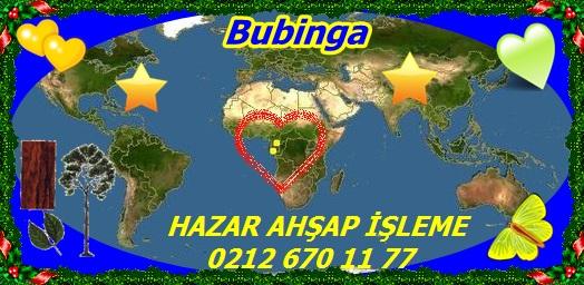Bubinga555