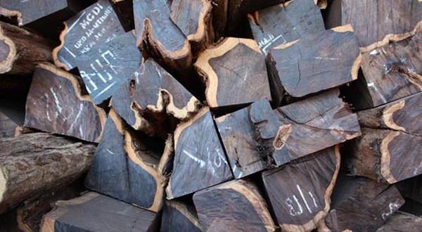 Semi-processed-FSC-African-blackwood-WP2