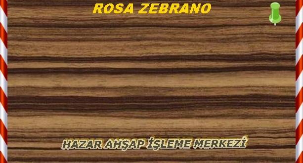 Rose Zebrano
