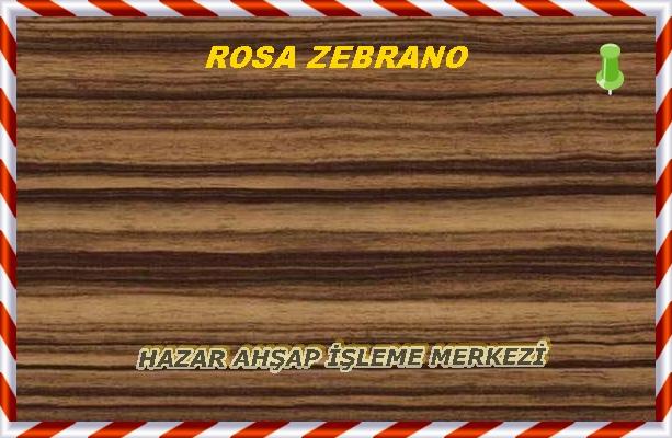 Zebrano5