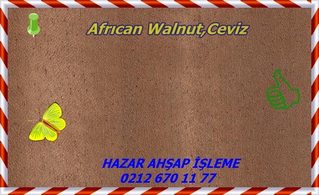african-walnut-s
