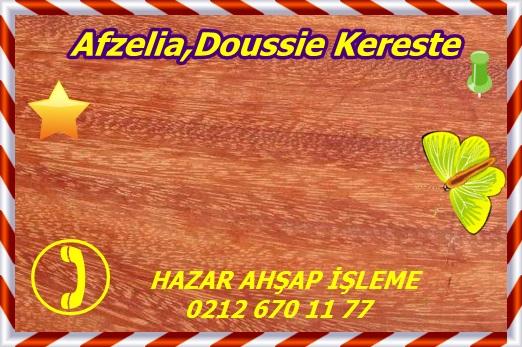 afzelia3