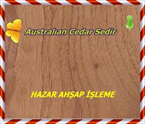 australian-red-cedar