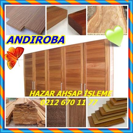 catsANDIROBA332