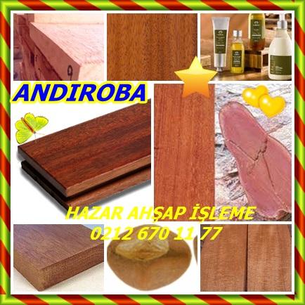 catsANDIROBA456