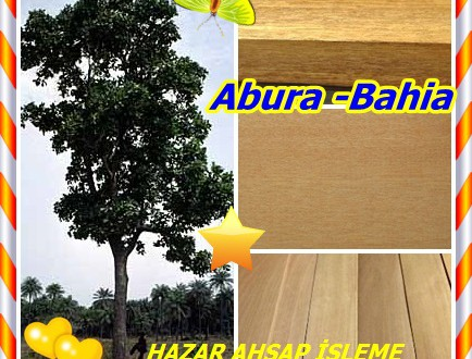 Abura -Bahia Kereste,(Mitragyna ciliata.),Subaha, clolom, clilom,Subaha, Bolom, Mukonia, M'vuku, obua, Omuzigo, LongWa,(Allemagne SUBAHA), (Angola MIVUKO),
