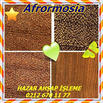 catsAfrormosia145