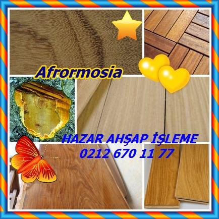 catsAfrormosia245