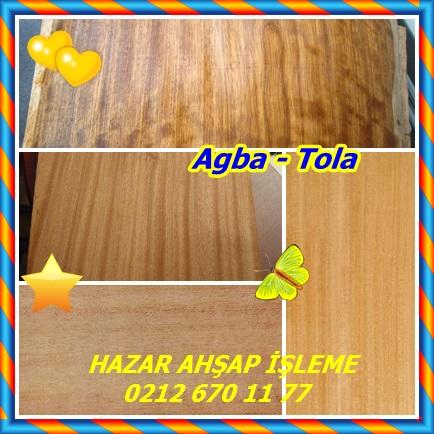catsAgba - Tola866