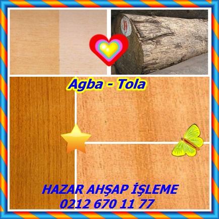 catsAgba - Tola88