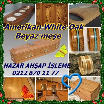 catsAmerikan White Oak ,Beyauz meşe