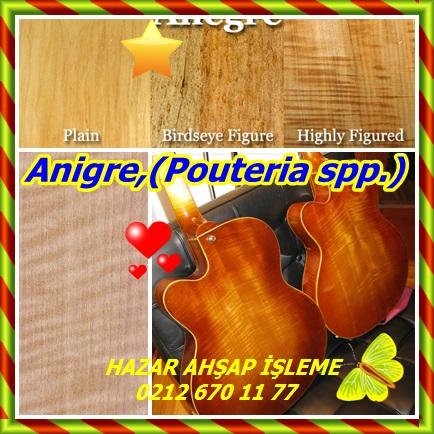 catsAnigre,(Pouteria spp.)75775