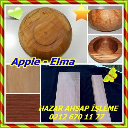 catsApple - Elma55488