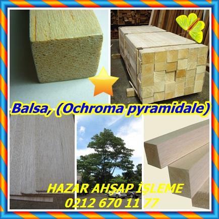 catsBalsa, (Ochroma pyramidale)223