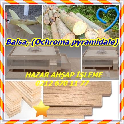 catsBalsa, (Ochroma pyramidale)454