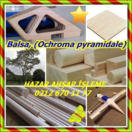 catsBalsa, (Ochroma pyramidale)545