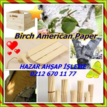 catsBirch American Paper4555