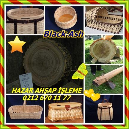 catsBlack Ash545