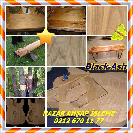 catsBlack Ash7856