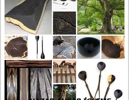 Afrika Blackwood,  (Dalbergia melanoxylon),Mpingo, (Swahili), Grenadilla, Mozambik abanoz, Mufunjo, Mugembe, Mukelete