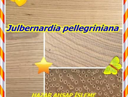 Beli Kereste,(Julbernardia pellegriniana),Ekop, Beli, Awoura,Zebrali
