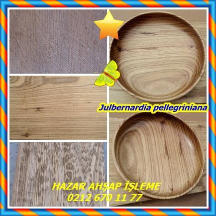 catsJulbernardia pellegriniana55