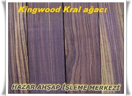 kingwood234