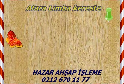 limba4-456×330