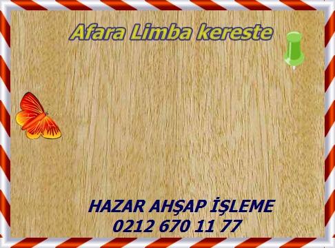 limba4-456x330