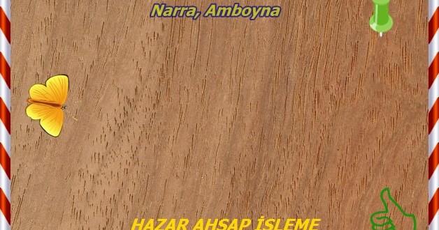 narra-3hzr