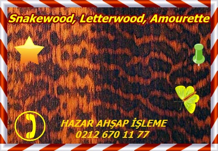 2088_Snakewood