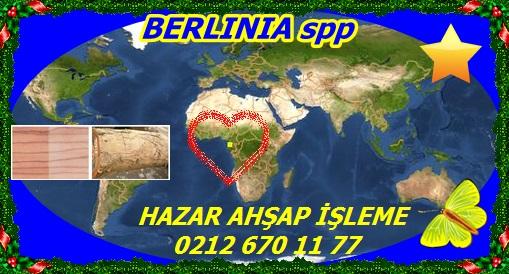 73384 BERLINIA spp