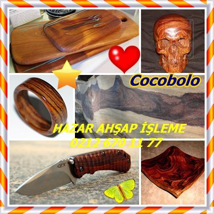 Cocobolo4