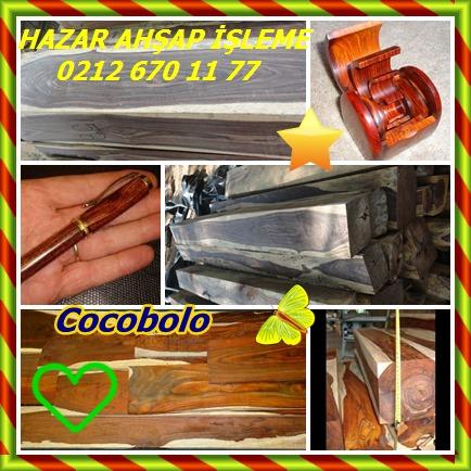 Cocobolo7