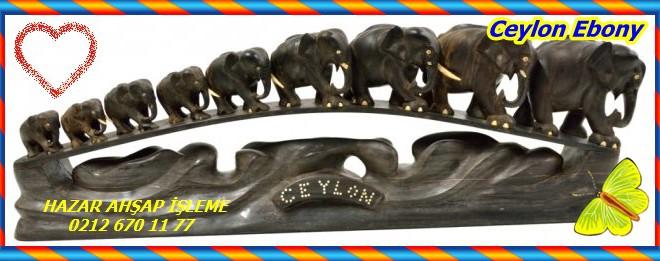 Ceylon Ebony,Seylan Abanoz, Doğu Hint Abanoz,(Diospyros ebenum)