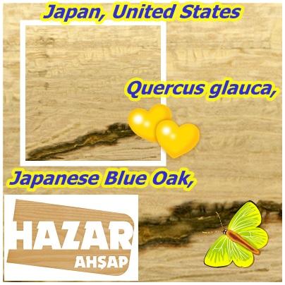 Japan, United States