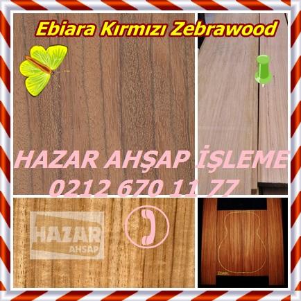 Kırmızı Zebrawood
