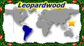 Leopardwood1