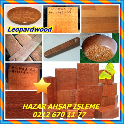 Leopardwood3