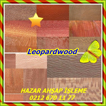 Leopardwood6