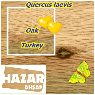 Oak,err