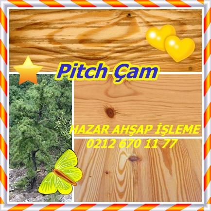 Pitch Çam