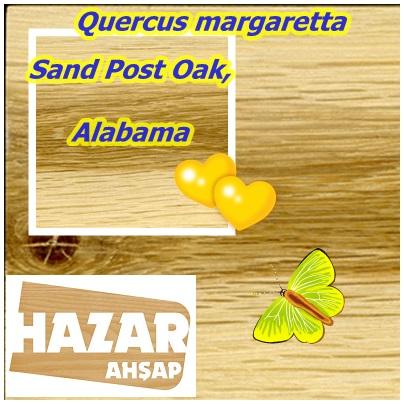 Sand Post Oak,