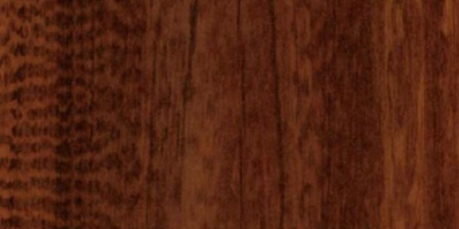 Snakewood-lucios-H1111-ST30_2