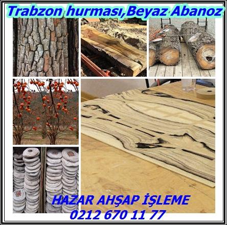 Trabzon 33hurması
