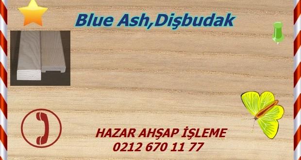 ash34