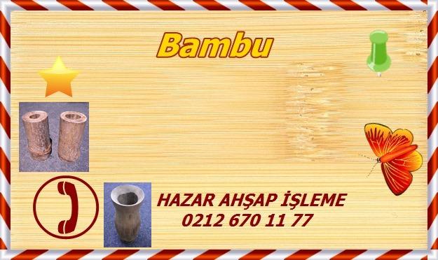 bamboo-fs