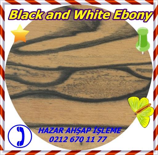 black-and-white-ebony